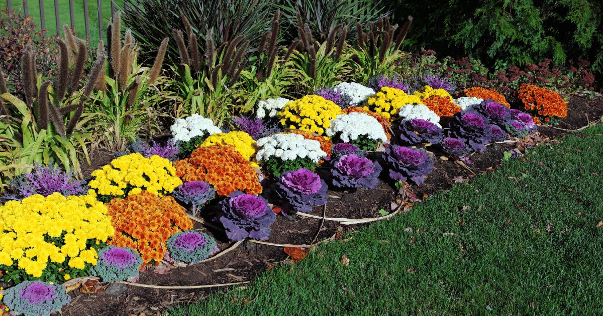 How to Make a Flower Garden - Shield Insurance Agency Blog
