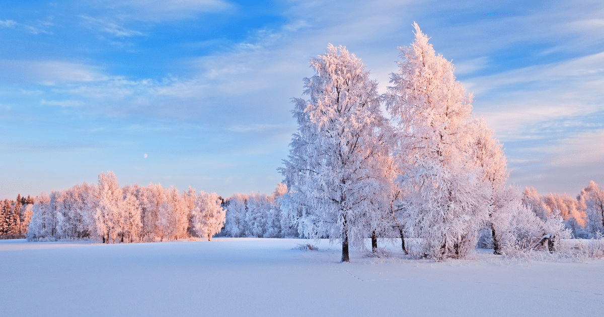 Winter Wise Protection – Shield Insurance Agency Blog