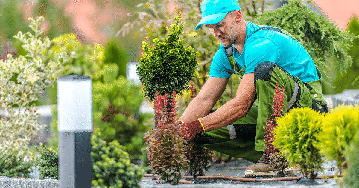 Get Gardening Muscles in Shape and Prevent Injuries - Shield Insurance Agency Blog
